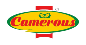 Camerous_logo-removebg-preview